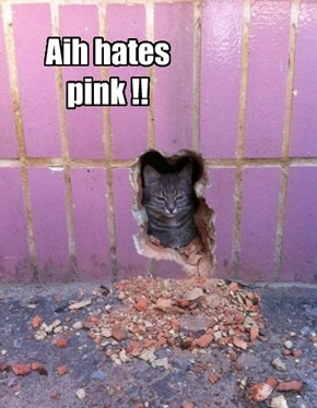 Aih hates pink !!