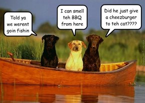 Dogs...so obedient...