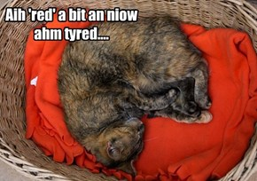Aih 'red' a bit an niow ahm tyred....