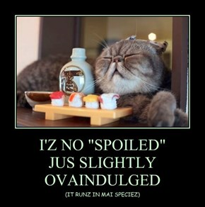 "I'Z NO ""SPOILED"" JUS SLIGHTLY OVAINDULGED"