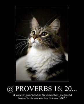 @ PROVERBS 16; 20...