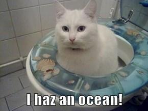 I haz an ocean!