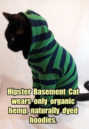 Hipster  Basement  Cat  wears  only  organic  hemp,  naturally  dyed  hoodies.