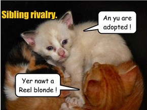 Yer nawt a Reel blonde !