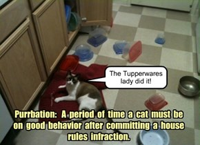 Purrbation:   A  period  of  time  a  cat  must  be  on  good  behavior  after  committing  a  house rules  infraction.