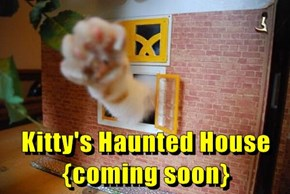 Kitty's Haunted House {coming soon}