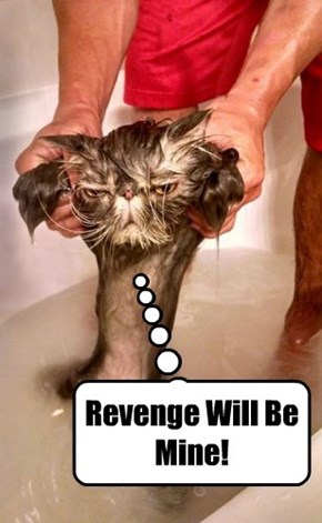 Revenge Will Be Mine!