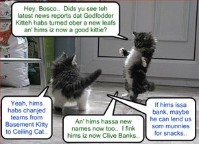 Bosco an' Kibby always habs a profound grasp ob teh daily news..