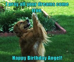 I pray all your dreams come true.    Happy Birthday Angel!