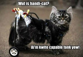 Wut is handi-cat?