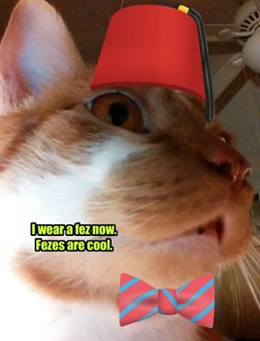 I wear a fez now.  Fezes are cool.