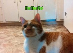I'm The Cat