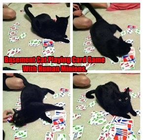 Basement Cat Playing Card Game With Human Minions.