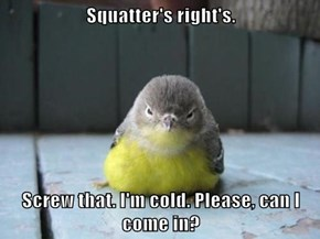 Squatter's right's.  Screw that. I'm cold. Please, can I come in?