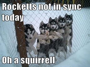 Rocketts not in sync today  Oh a squirrell