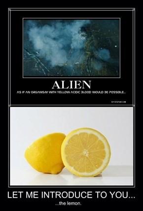 I Knew Lemons Were Evil