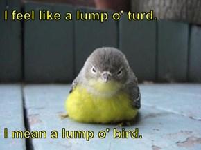 I feel like a lump o' turd.  I mean a lump o' bird.