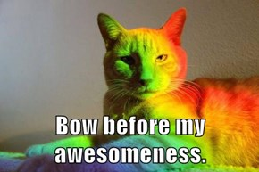 Bow before my awesomeness.