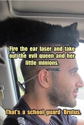 Fire  the  ear  laser  and  take  out  the  evil  queen  and  her  little  minions.