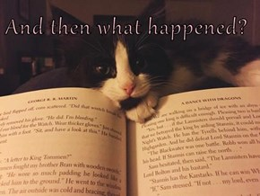 And then what happened?