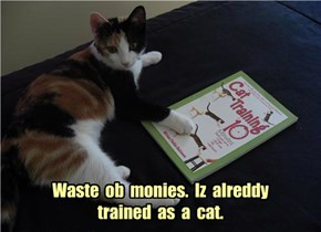 Waste  ob  monies.  Iz  alreddy  trained  as  a  cat.