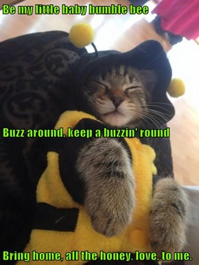 Be my little baby bumble bee Buzz around, keep a buzzin' round Bring home, all the honey, love, to me.