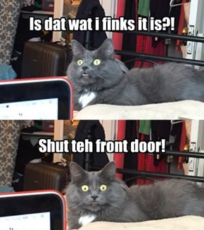 Kittie is SHOCKED!