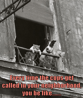 Every time the cops get called in your neighborhood, you be like.......