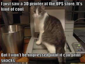 I just saw a 3D printer at the UPS store. It's kind of cool,  But I won't be impressed until it can print snacks.