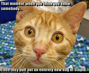 That moment when you think you know somebody...  Then they pull out an entirely new bag of stupid.