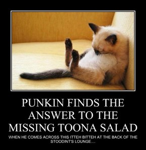 PUNKIN FINDS THE ANSWER TO THE MISSING TOONA SALAD
