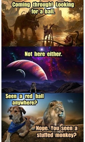 When Time Lords Play Fetch