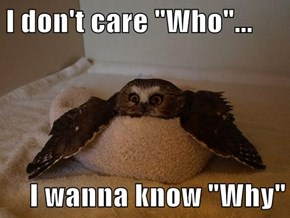 "I don't care ""Who""...  I wanna know ""Why"""