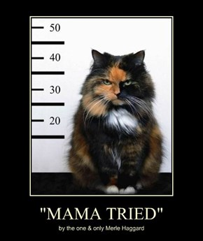 """MAMA TRIED"""