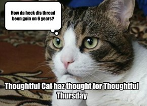 Thoughtful Cat haz thought for Thoughtful Thursday