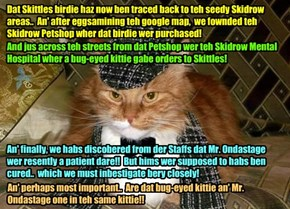 """SHOCKING NEW FINDINGS! After careful consultashuns wiff his fellow Inbestigators, star Detektive Purrlock Holmes follows up on teh """"Skidrow"""" clue dat promises to gib a much needed breakthru in teh notorious KKPS Nip Skandal.."""