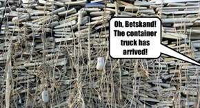 Oh, Betskand!  The container truck has arrived!