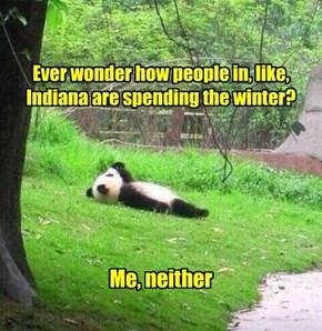 Panda Jerk