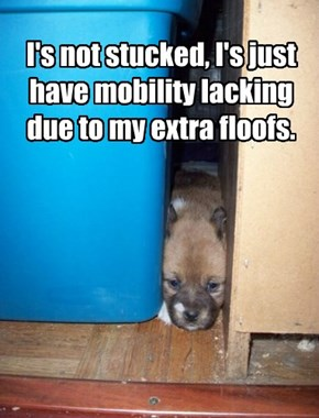 I's not stucked, I's just have mobility lacking due to my extra floofs.