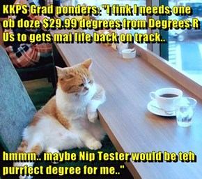 "KKPS Grad ponders: ""I fink I needs one ob doze $29.99 degrees from Degrees R Us to gets mai life back on track..  hmmm.. maybe Nip Tester would be teh purrfect degree for me.."""