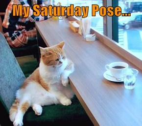 My Saturday Pose...