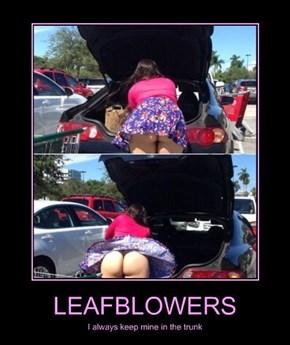 Always Keep a Leaf Blower Around