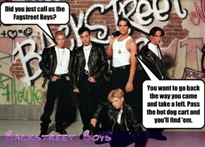 Did you just call us the Fagstreet Boys?