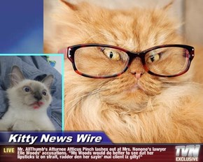 """Kitty News Wire - Mr. AllThumb's Atturnee Atticus Pinch lashes out at Mrs. Nonono's lawyer Elle Woods' accusations. """"Ms Woods would do better to see dat her lipsticks iz on strait, radder den her sayin' mai client iz gilty!"""""""