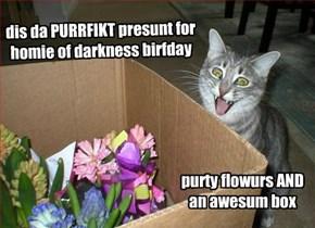 happy birfday, homie of darkness