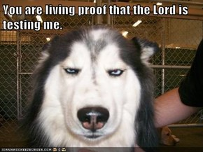 You are living proof that the Lord is testing me.
