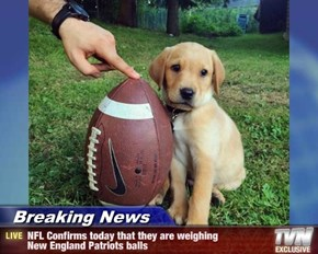 Breaking News - NFL Confirms today that they are weighing  New England Patriots balls