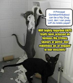 NIP SKANDAL UNFORESEEN CONSEQUENCES - A disturbing development at KKPS!
