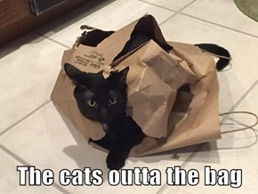 The cats outta the bag