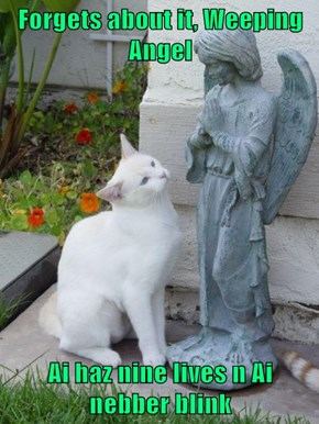 Forgets about it, Weeping Angel  Ai haz nine lives n Ai nebber blink